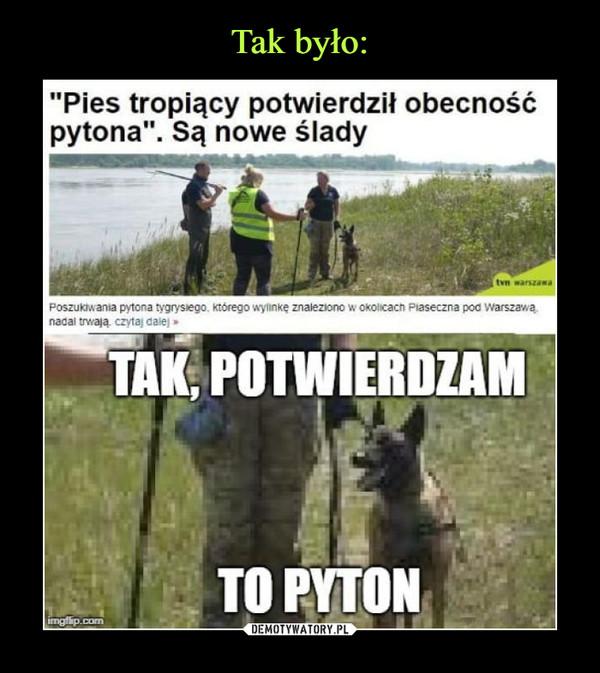 """–  """"Pies tropiący potwierdził obecność pytona"""". Są nowe ślady TAK, POTWIERDZAMTO PYTON"""